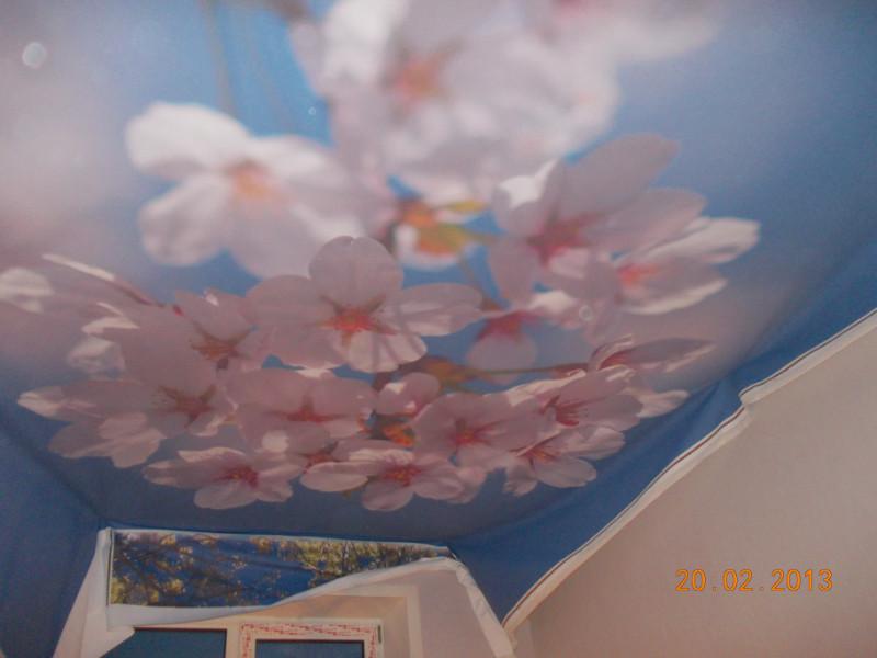 Fourniture faux plafond algerie tarif horaire artisan essonne soci t ktly - Quelle ponceuse pour platre ...